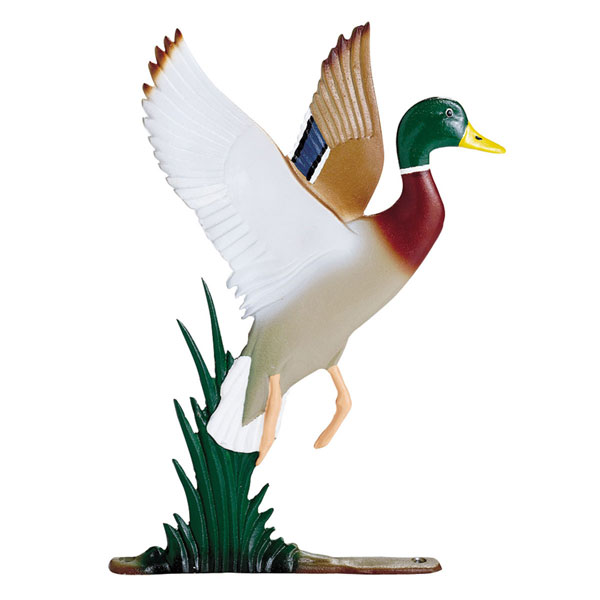 "8""W x 11""H Duck Mailbox Ornament, Color"